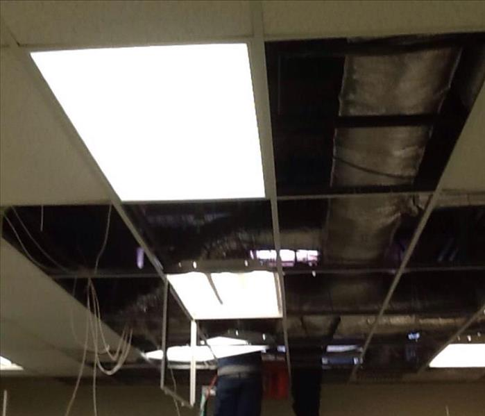 Stained Ceiling Tiles Removed from Office After