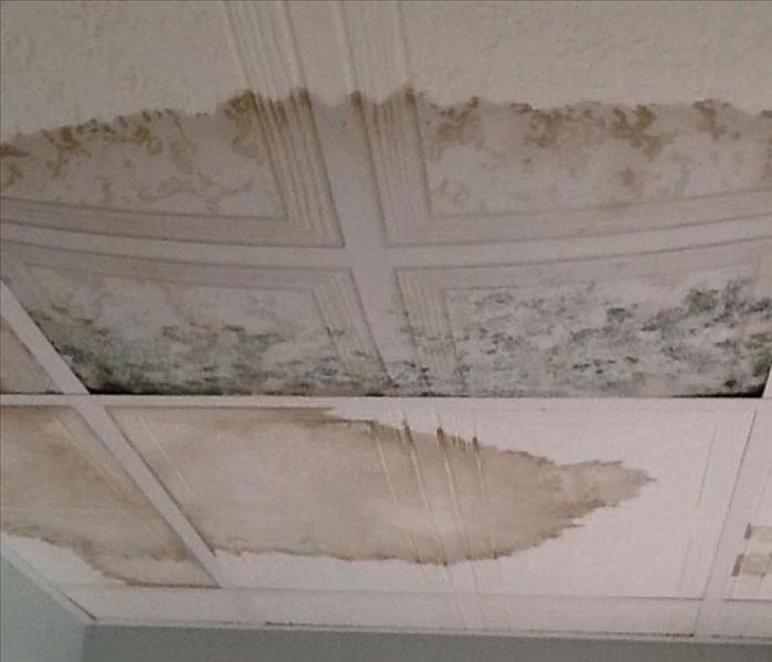 Black Mold Removal in Cumberland, Rhode Island Before