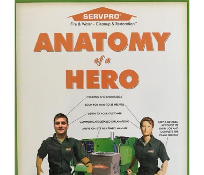 Anatomy of a Hero