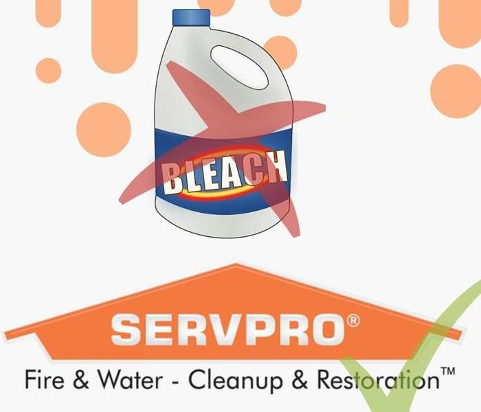 It's always best to contact SERVPRO when dealing with mold