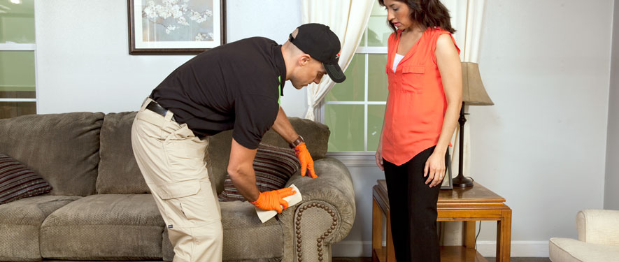 Woonsocket, RI carpet upholstery cleaning